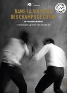 champs_coton_1
